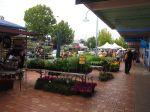 Main St Market